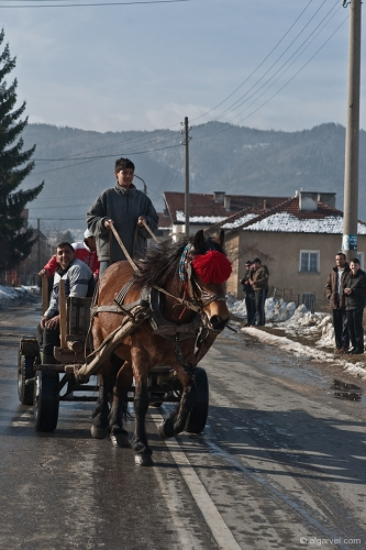 2010-02-20-09-56-24-todorov-den-rakitovo