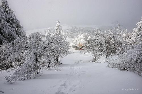 2010-01-23-15-01-22-shipka-i-smolian