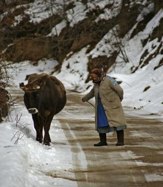 2010-01-30-12-28-02-kosovo