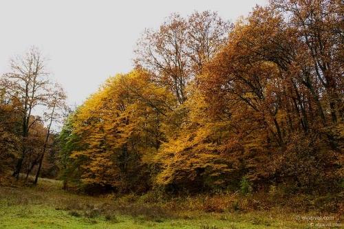 2009-10-31-09-46-11-velingrad