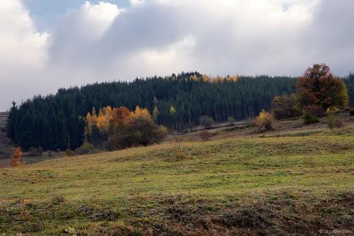2009-11-01-08-27-28-velingrad