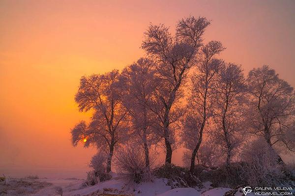 Пейзажната фотография